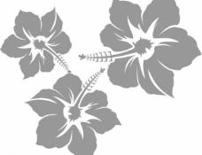 花 鲜花图片