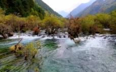 九寨沟盆景滩图片