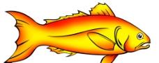 红烧鱼图片图片