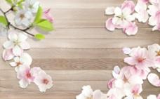 木板花卉图片