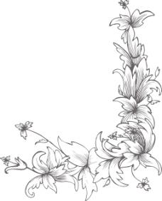 矢量花卉帧