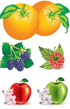诱人新鲜水果矢量素材