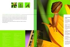 生物科学画册图片