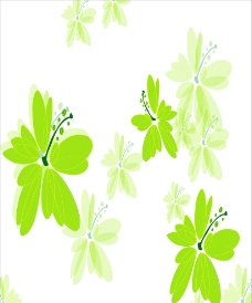 绿叶花图片