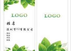 绿色 名片图片