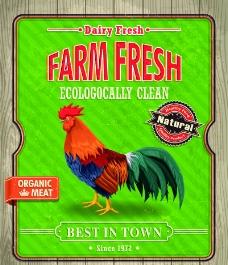 农场新鲜食品海报矢量图片