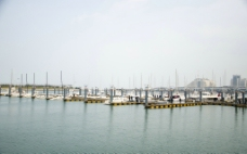 海滨码头图片
