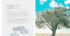 企业文化手册2 下载