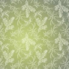 冷杉槲寄生和冬青绿背景