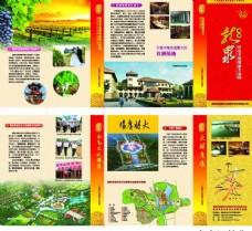 湖南龙泉折页图片