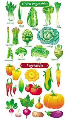 健康绿色美味蔬菜矢量素材