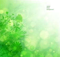 绿色花卉背景图片