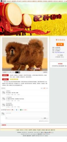 藏獒网页图片