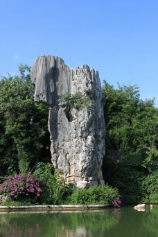 彝族石林 大象石图片
