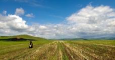 蒙古草原图片