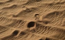 沙漠中的足迹图片