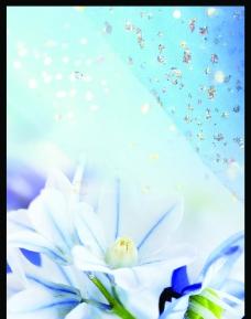 花朵背景素材图片