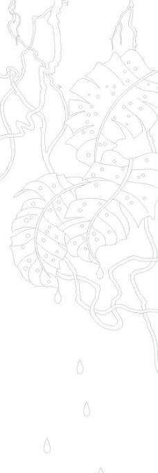 滴水落叶图片