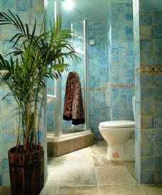 蓝色卫生间设计