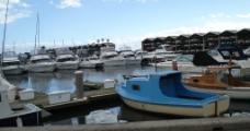 墨尔本的游艇图片