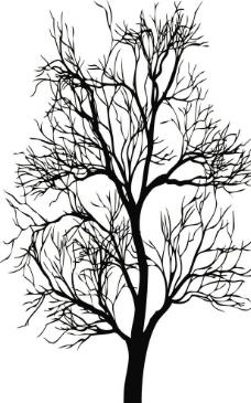 景观植物单色手绘