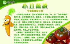 蔬菜宣传单图片