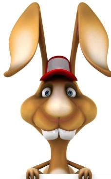 3d兔子圖片