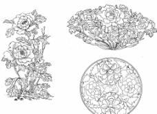 富貴牡丹花卉插圖圖片