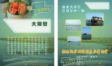 太湖大闸蟹彩页阳澄湖图片