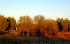 南湖湿地公园图片