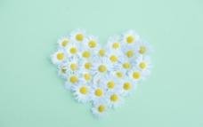 心形花朵图片