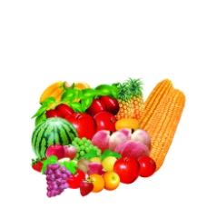 水果蔬菜圖片