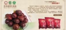 五星红枣图片