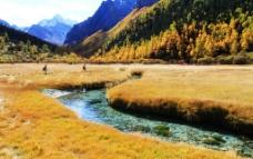 山脚下溪流与草地风景图片