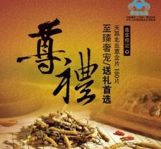 虫草宣传海报图片