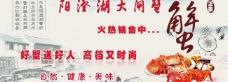 阳澄湖大闸蟹广告图图片