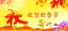 秋收季节图片