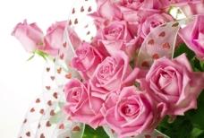 粉色浪漫花束