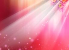 浪漫粉色背景图片
