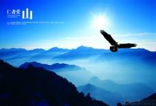 翱翔的雄鹰图片 企业海报素材
