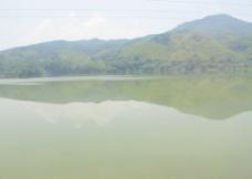 天然绿景 山水一线图片