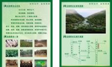 龙鼎翠谷DM单图片