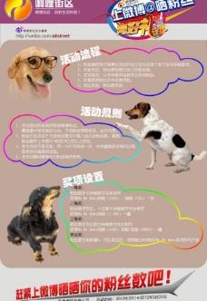 淘宝店铺新浪微博宣传海报图片