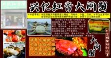 兴化红膏大闸蟹图片