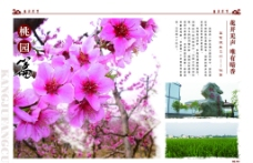 风景画册图片