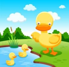 鸭子素材图片