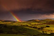 彩虹下的绿洲