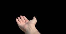手势动态视频素材