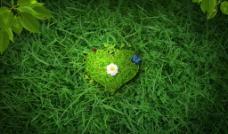绿色的心图片
