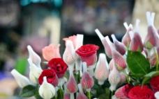 情人节 玫瑰花图片